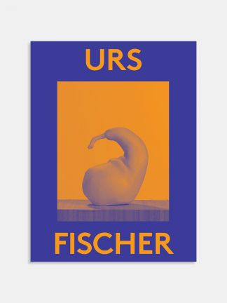 2000 Words: Urs Fischer - BDEST